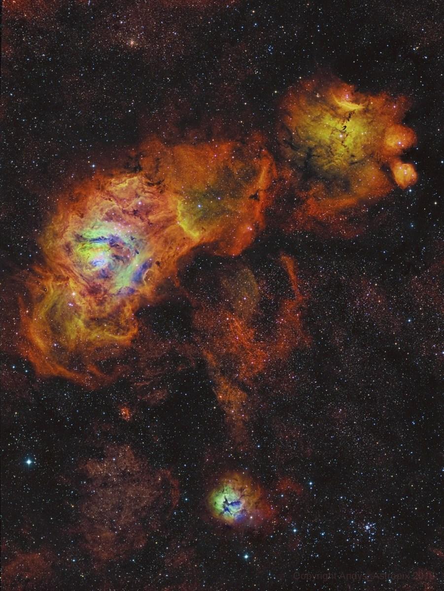 Girassóis em Sagittarius porAndrew Campbell