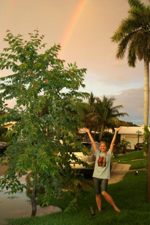 Rainbow Eucalyptus (Eucalyptus deglupta) trees grown by customers