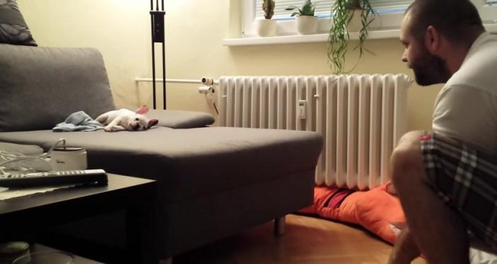 フレンチブルドッグの挑戦 眠り