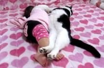 赤ちゃんといっしょにお昼寝