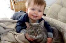 赤ちゃんの大好き攻撃に耐える猫