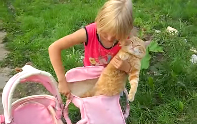 おままごとに付き合う猫