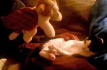 子猫にぬいぐるみを近づけてみると…
