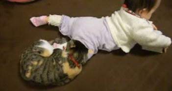 赤ちゃんの足にしがみつく猫