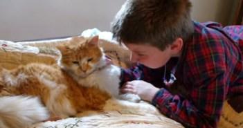 行方不明になった猫と再会する男の子