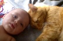 赤ちゃんの頭にスリスリ