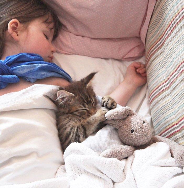 一緒に眠る猫と少女