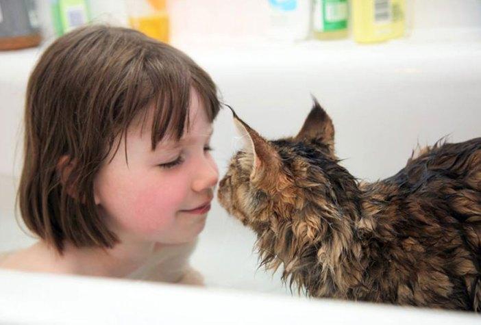 いっしょにお風呂に入る猫と少女
