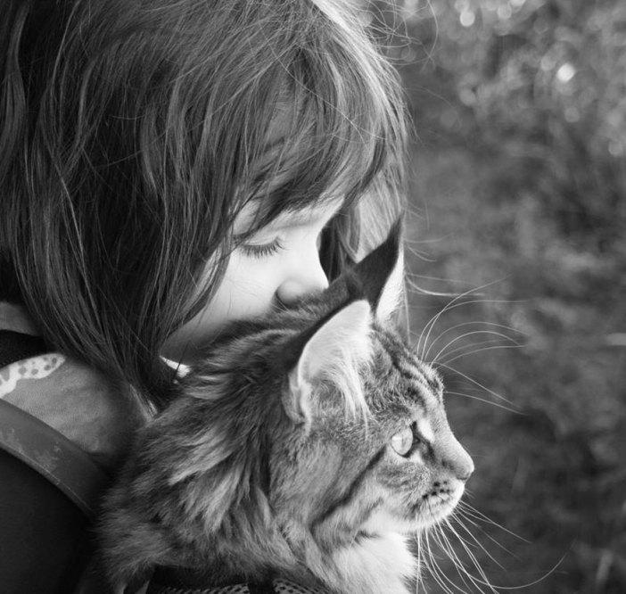 猫に少女がキス