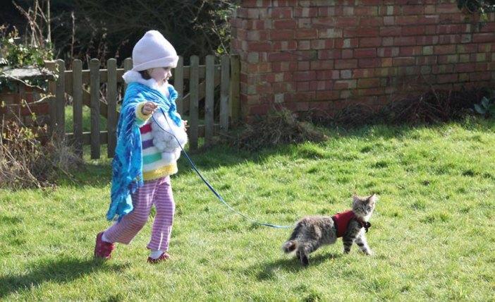 いっしょに散歩する猫と少女