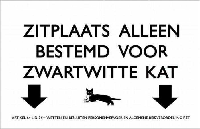 猫専用シート