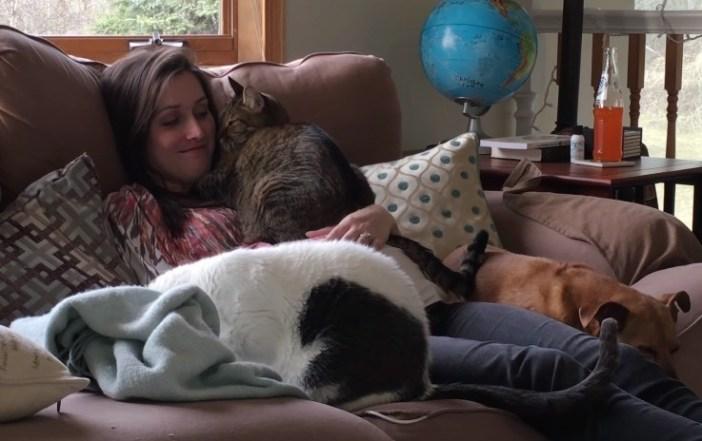 妊娠中のお腹に寄り添う猫