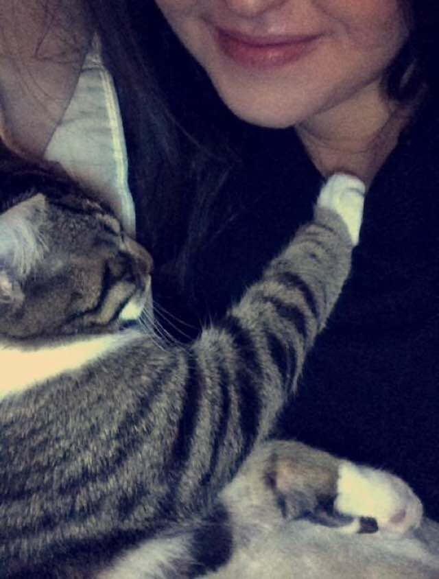 ハグ大好きな猫