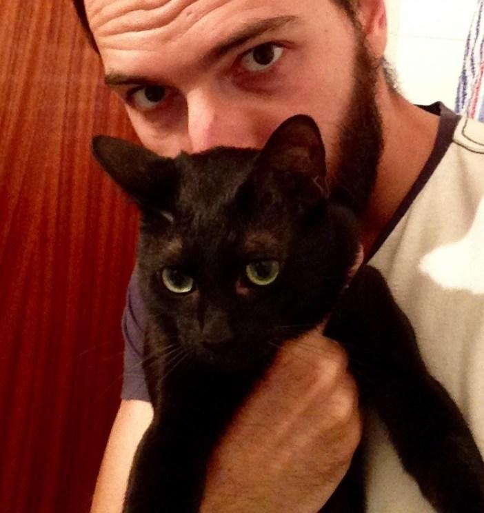 成長した黒猫