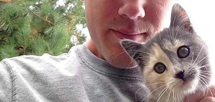 トウモロコシ畑で飼い主さんと出会う子猫