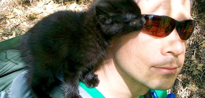 山で出会った子猫