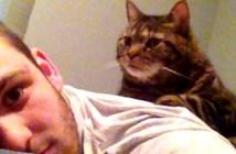 老猫と男性