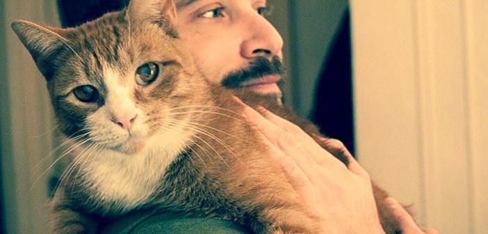 保護猫と男性