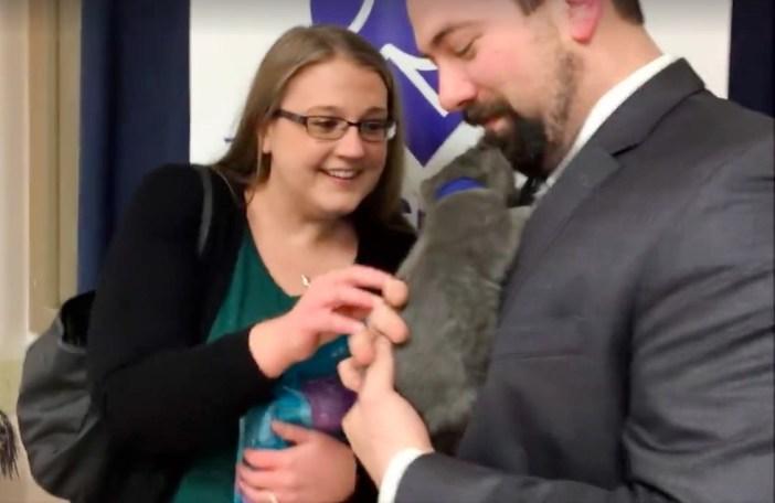 子猫を抱っこする男性