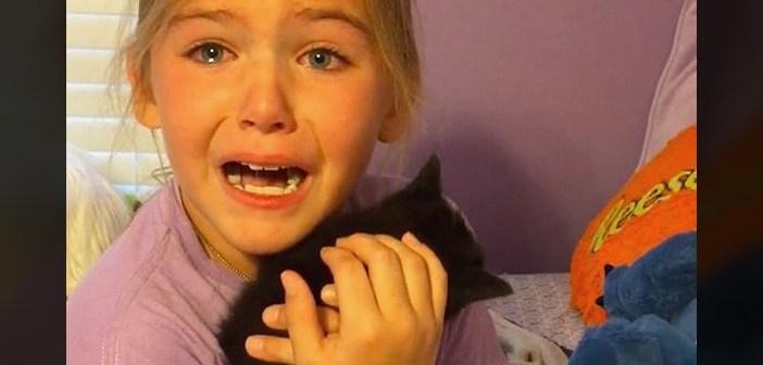 子猫と少女