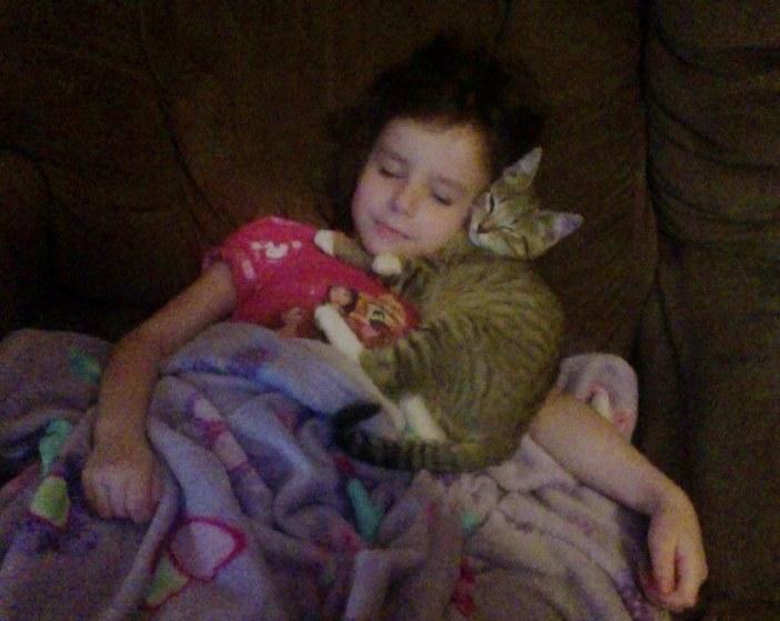 女の子にくっつく子猫