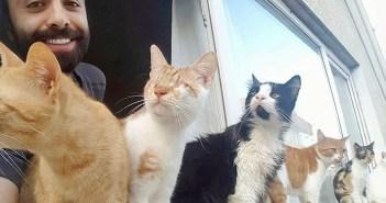 負傷した猫達を路上から救い続けるピアニスト。猫達の心を癒す演奏で、深い絆が結ばれる (11枚)