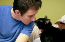 猫に救われた兵士