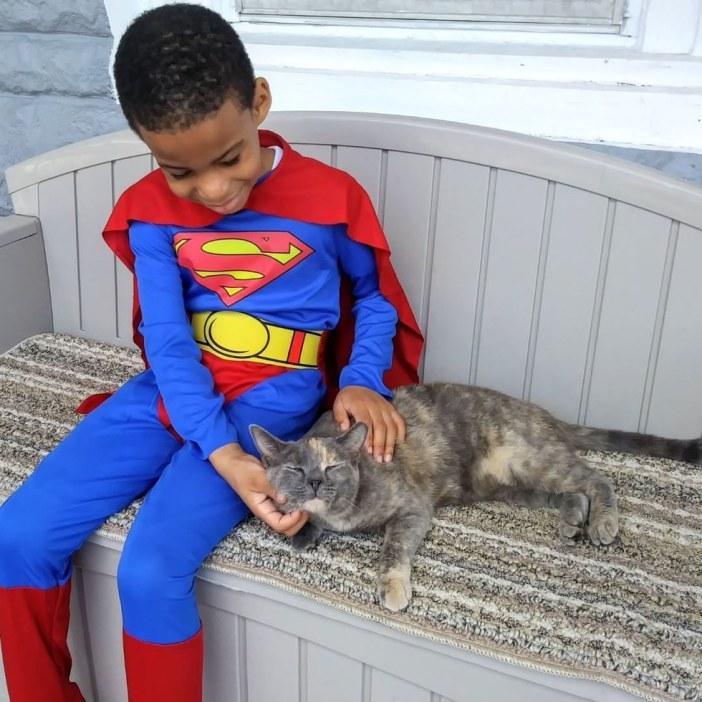 スーパーマンと猫