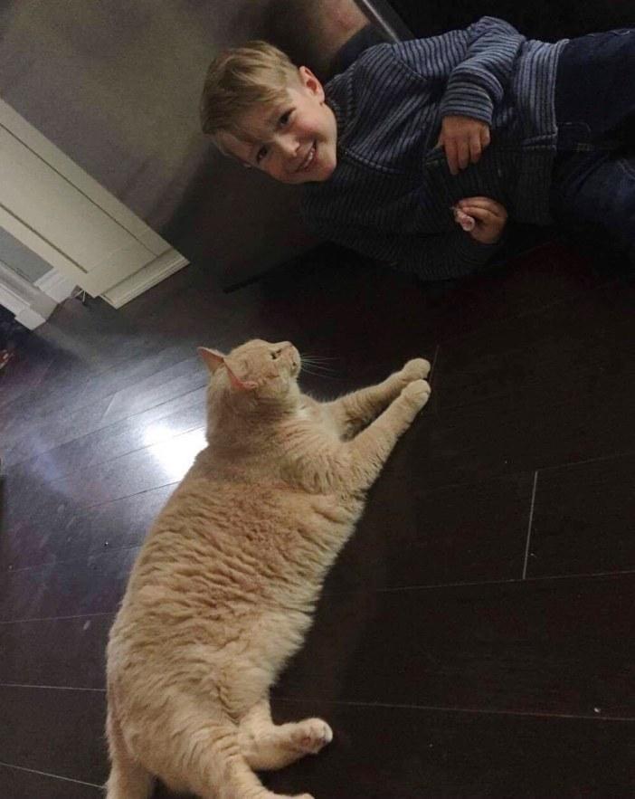 仲良し男の子と猫