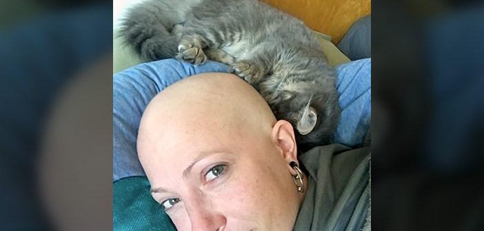 頭に抱きつく子猫
