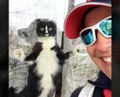 """郵便配達員が来ると、ガラス越しに猛アタックしてくる猫さん。その """"番猫"""" ぶりが凄かった (〃∇〃)!"""