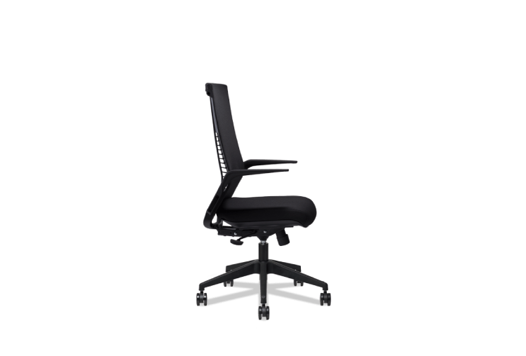 Home Chairs Theory | Euro Chairs Manufacturer