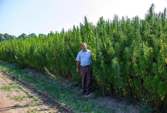 Michel Terestchenko near the hemp plantation in Hlukhiv. Photo: courtesy