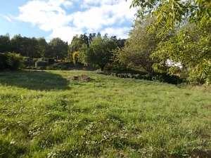 terrain-nayemont
