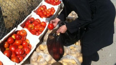 Photo of توزيع اليوم ألفين حصة غذائية على العائلات في مجمع الفيحاء الرياضي