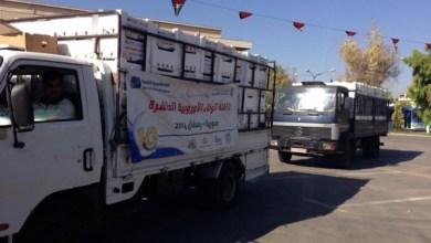 Photo of حملة الوفاء اﻷوروبية (خبر)