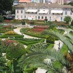 jardim-zoologico-garden