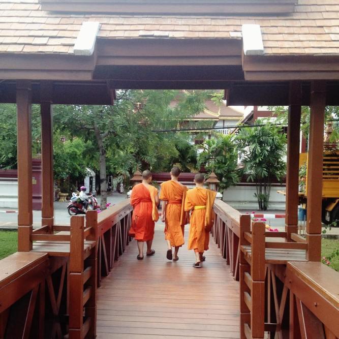 Três pequenos monges ❤️❤️❤️ #thailand #chiangmai #eusouatoa