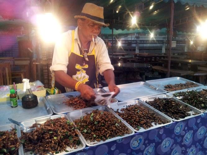 comer-grilos-fritos-tailandia-eusouatoa