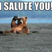 Bear Salute