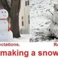 Snowman: Expectation vs Reality
