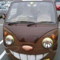 Mini catbus = cat car?