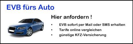 eVB Auto