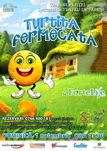 Afis-WEB-Turtita-Fermecata