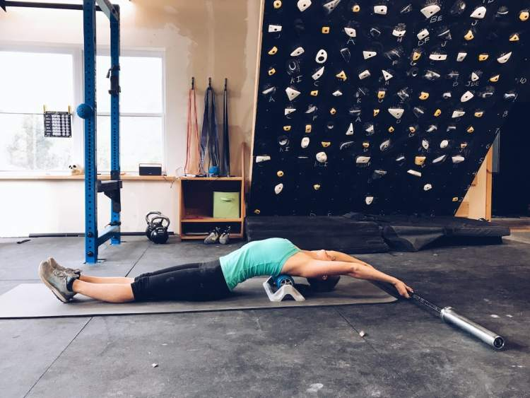 Supple Leopard Climbing Mobility