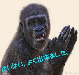 新年,初笑い,動物,おもしろ,ネタ画像,まとめ013