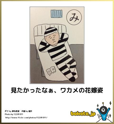 bokete, おもしろ, まとめ, ボケて, 爆笑, 画像1691