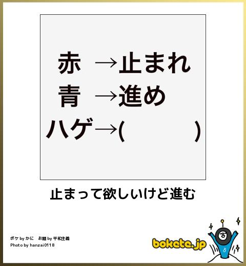 bokete, おもしろ, まとめ, ボケて, 爆笑, 画像318