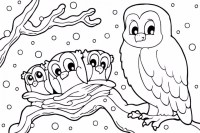 Get This Printable Winter Coloring Pages 810599