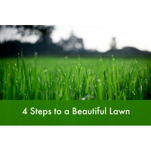 Medium Crop Of Beautiful Lawn And Landscape